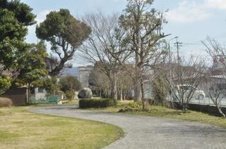 2014-03-11 春の公園.jpg